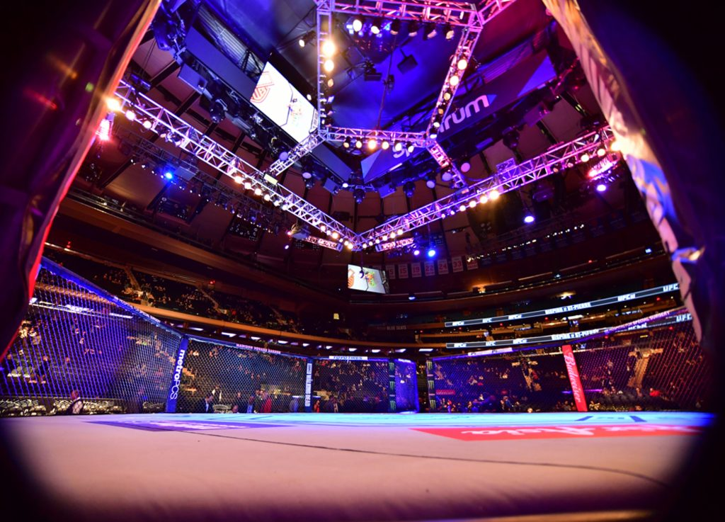 UFC Octagon