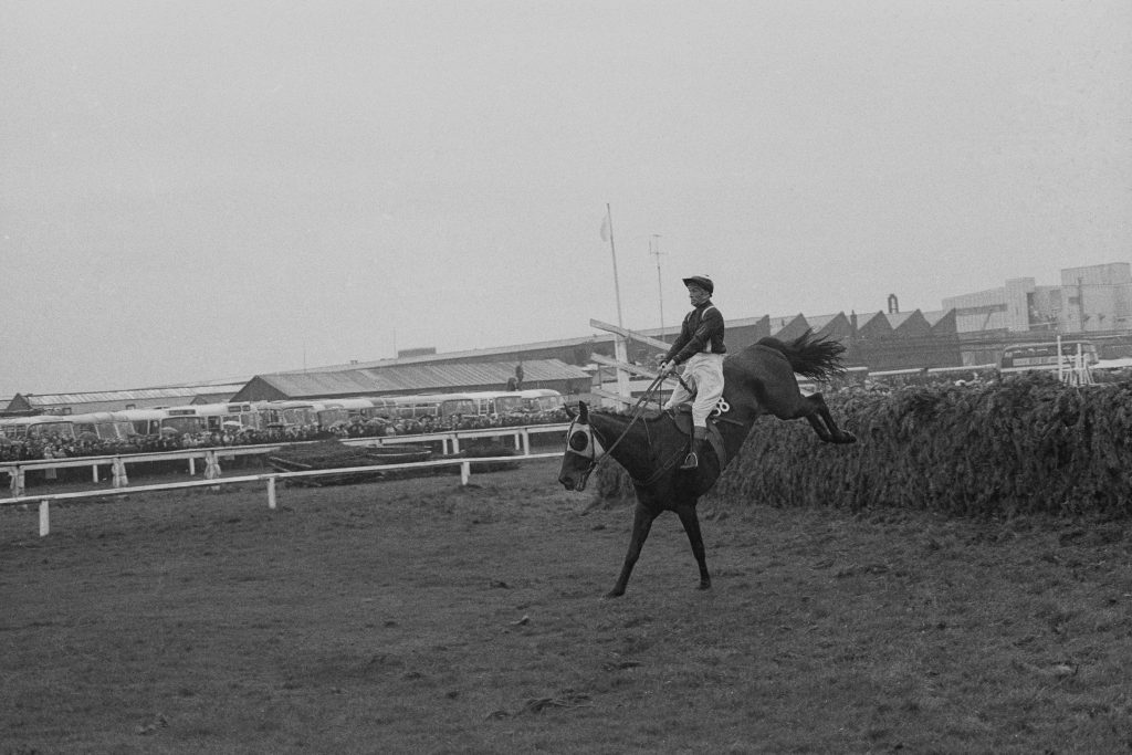 Foinavon, ridden by John Buckingham