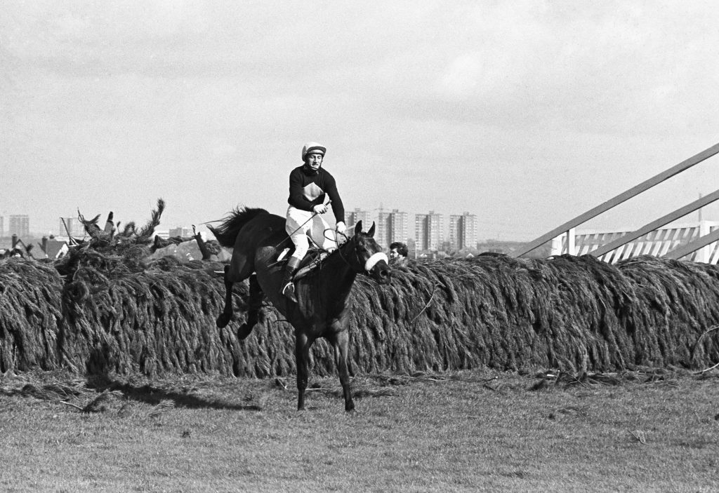 Red Rum Grand National