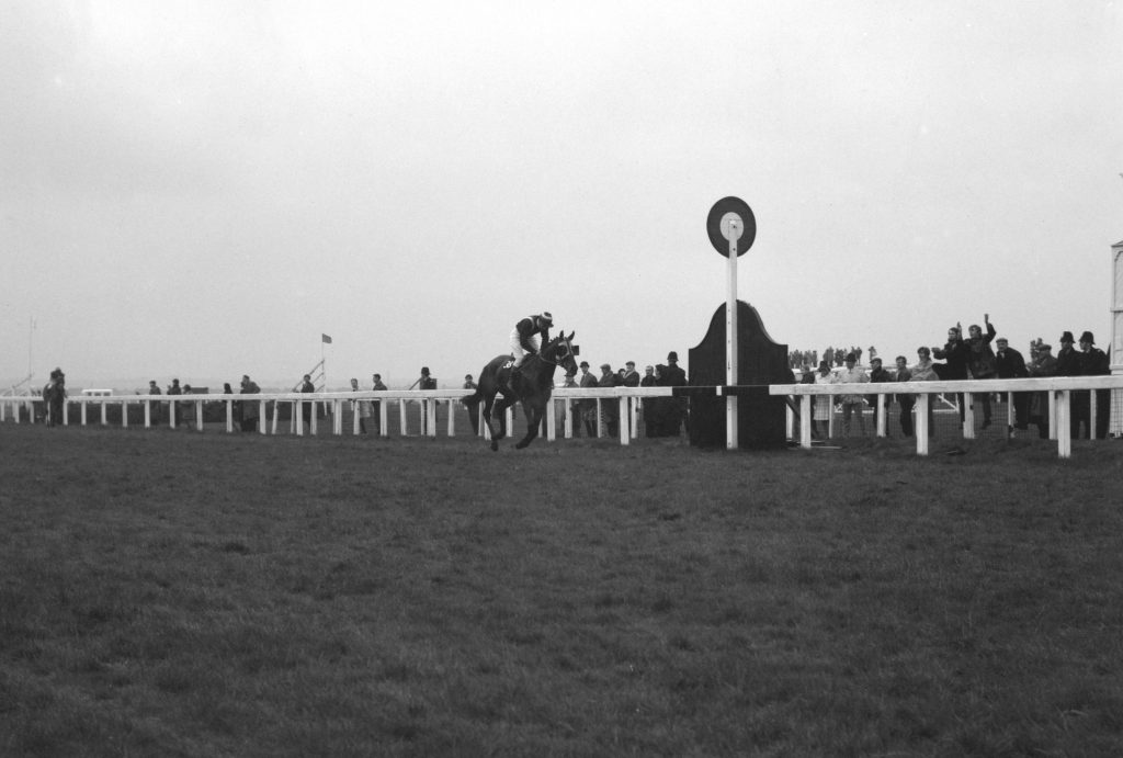Foinavon Grand National
