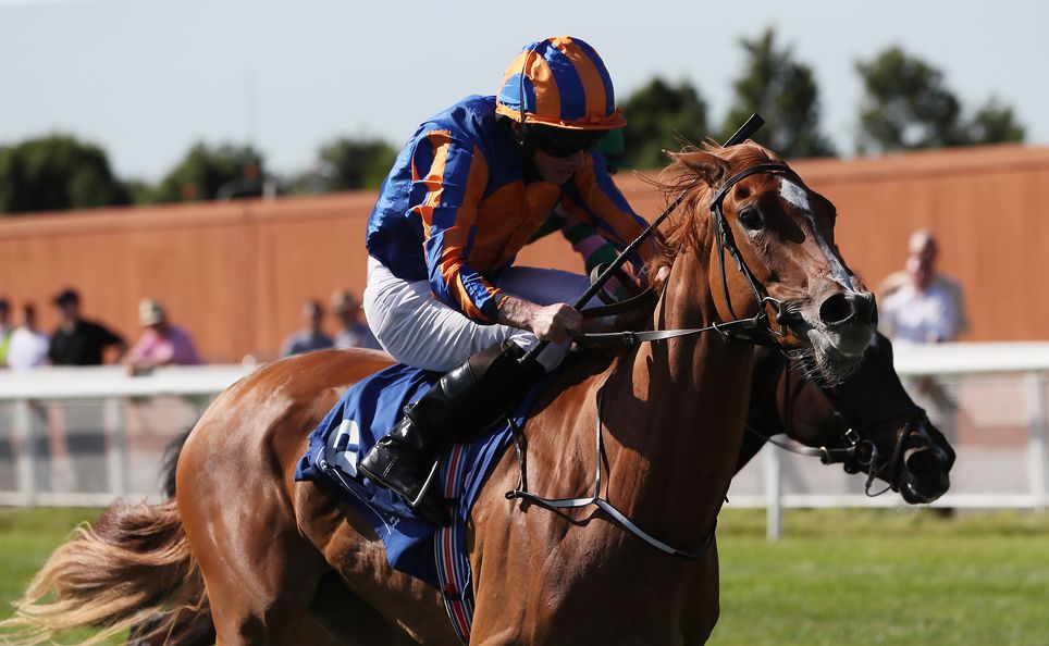 Kew Gardens is favourite in the William Hill St Leger odds