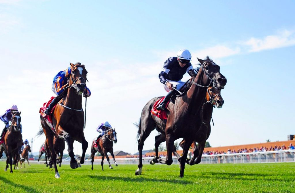 St leger betting tips