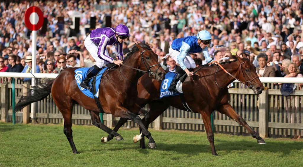 Vertem Futurity Trophy betting tips