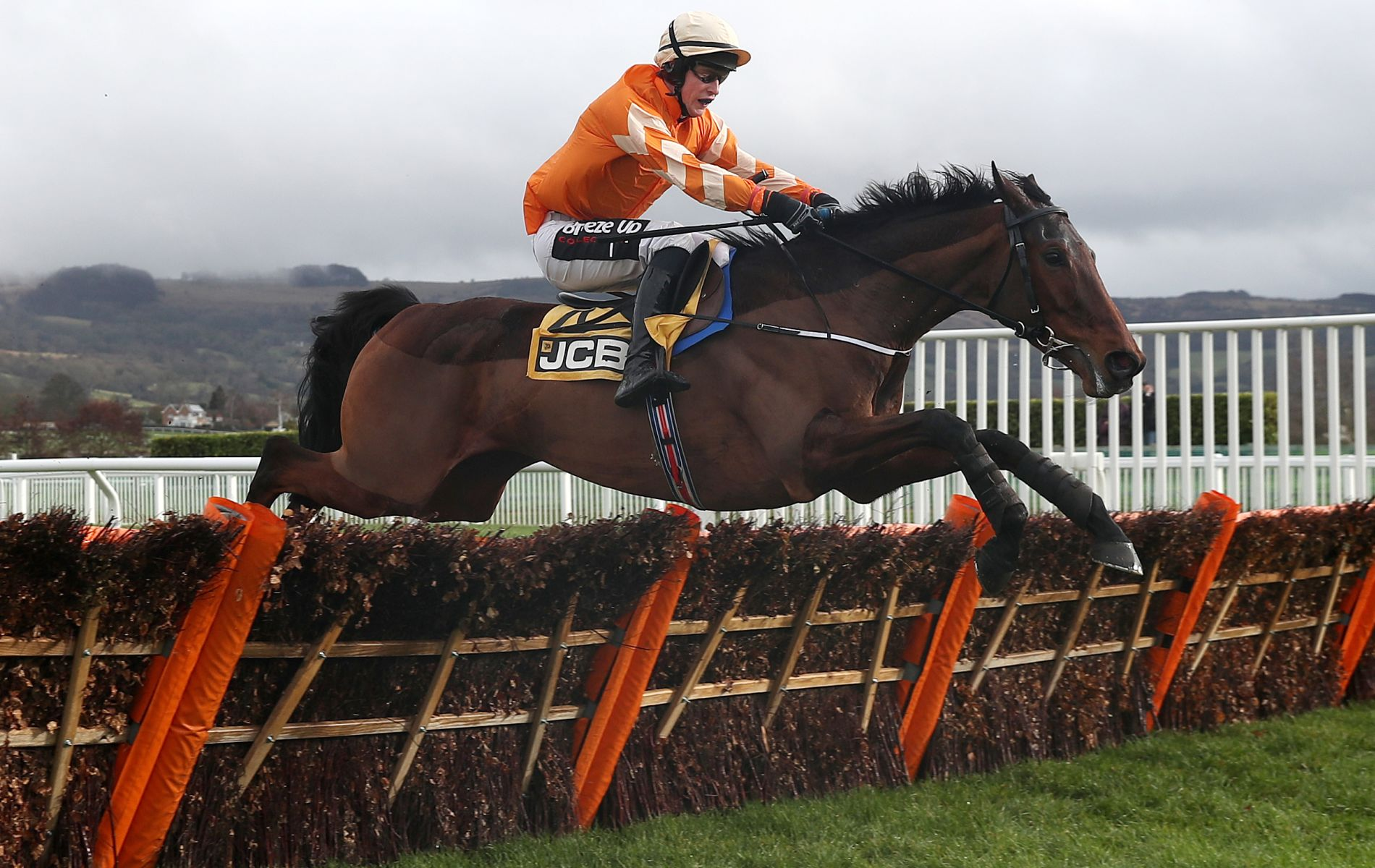 Triumph Hurdle betting