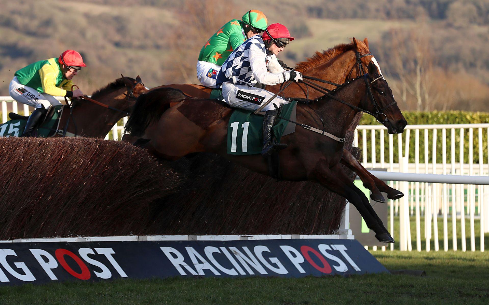 Kim Muir betting Cheltenham Festival odds