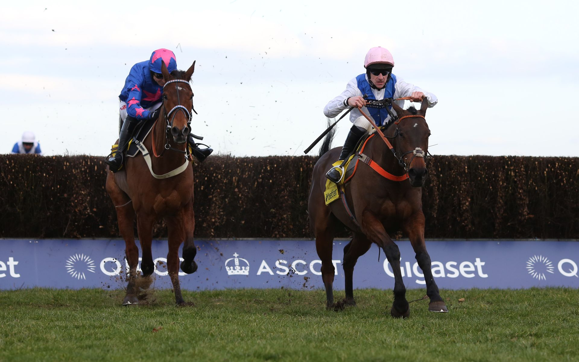 Waiting Patiently Ascot Chase odds
