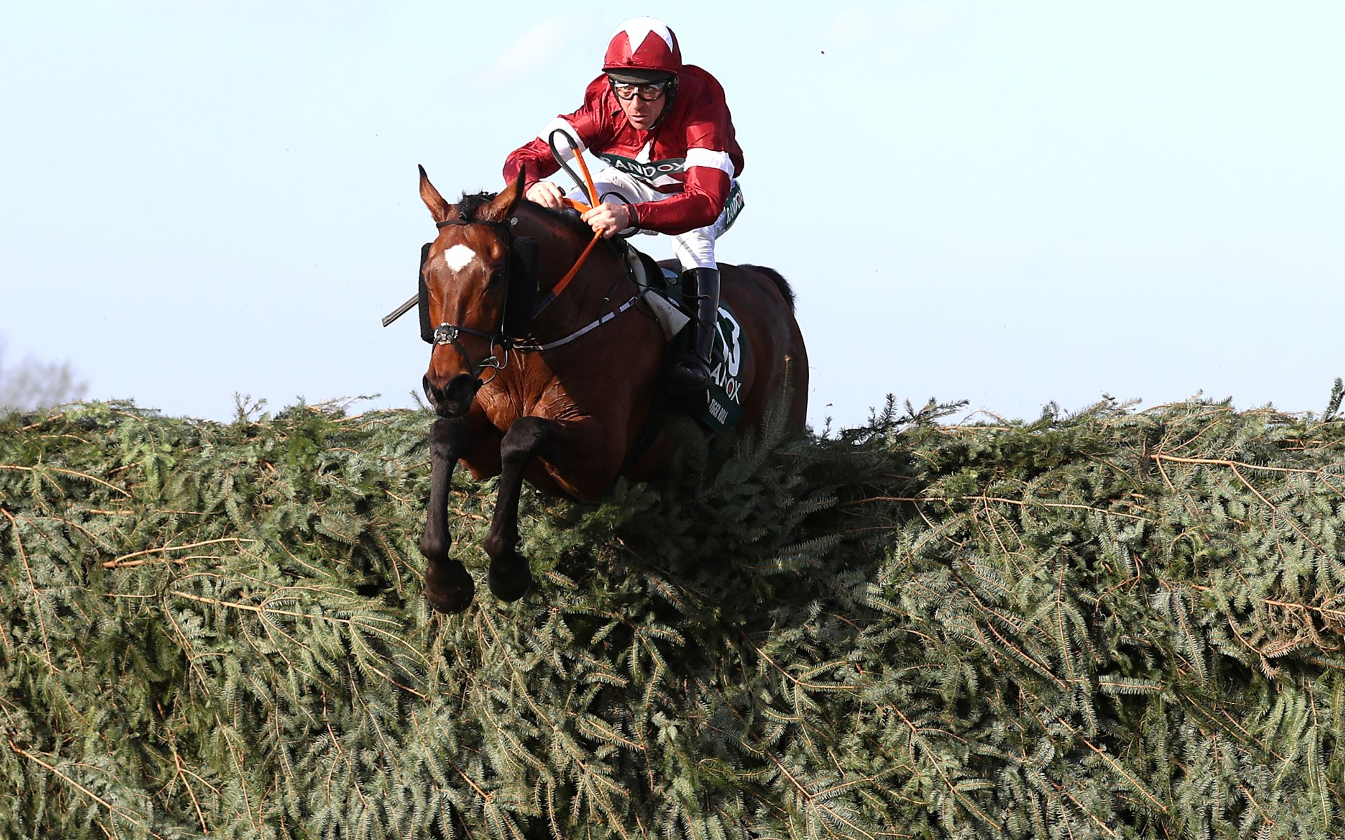 Tiger Roll Grand National betting