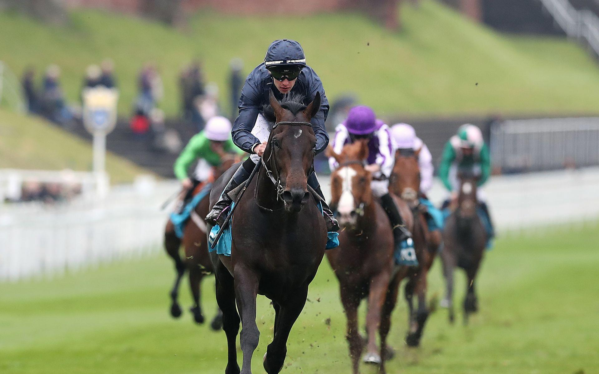 Epsom Derby betting odds 2019 Sir Dragonet
