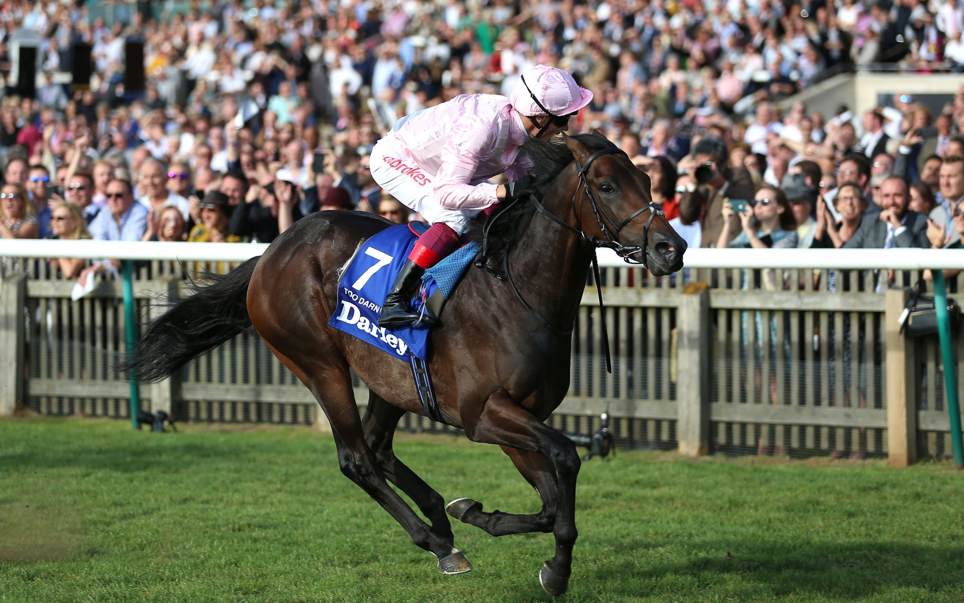 Too Darn Hot Irish 2000 Guineas betting odds tips