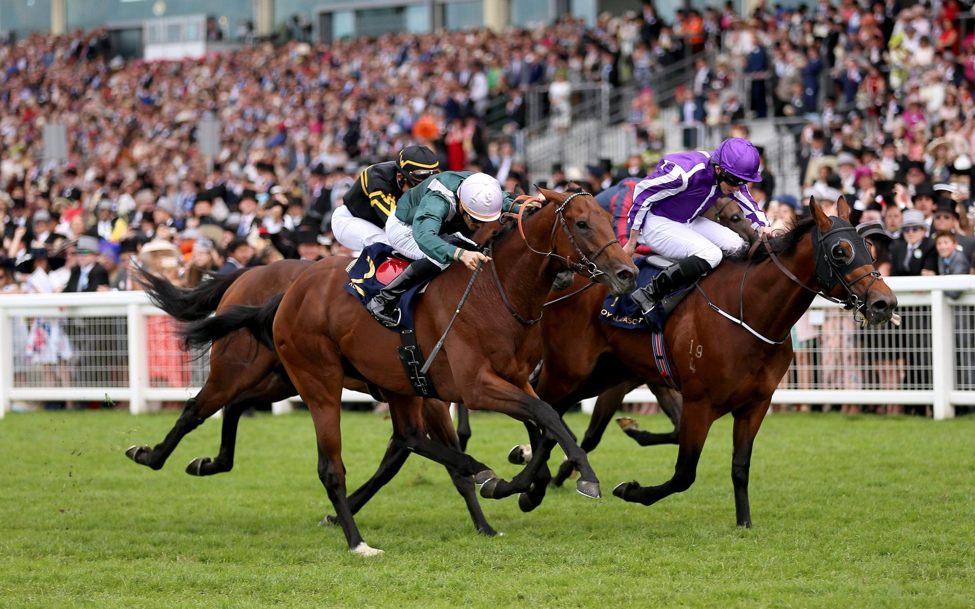 Diamond jubilee stakes 2021 betting financial spread betting explained meaning